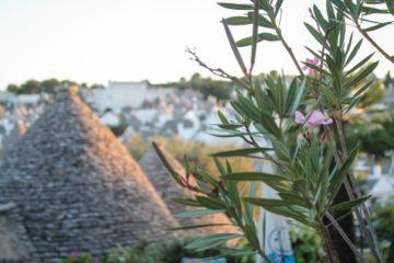 Puglia day 1 / Alberobello