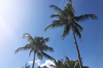 MIAMI BEACH day one | cosa fare, dove mangiare, dove dormire