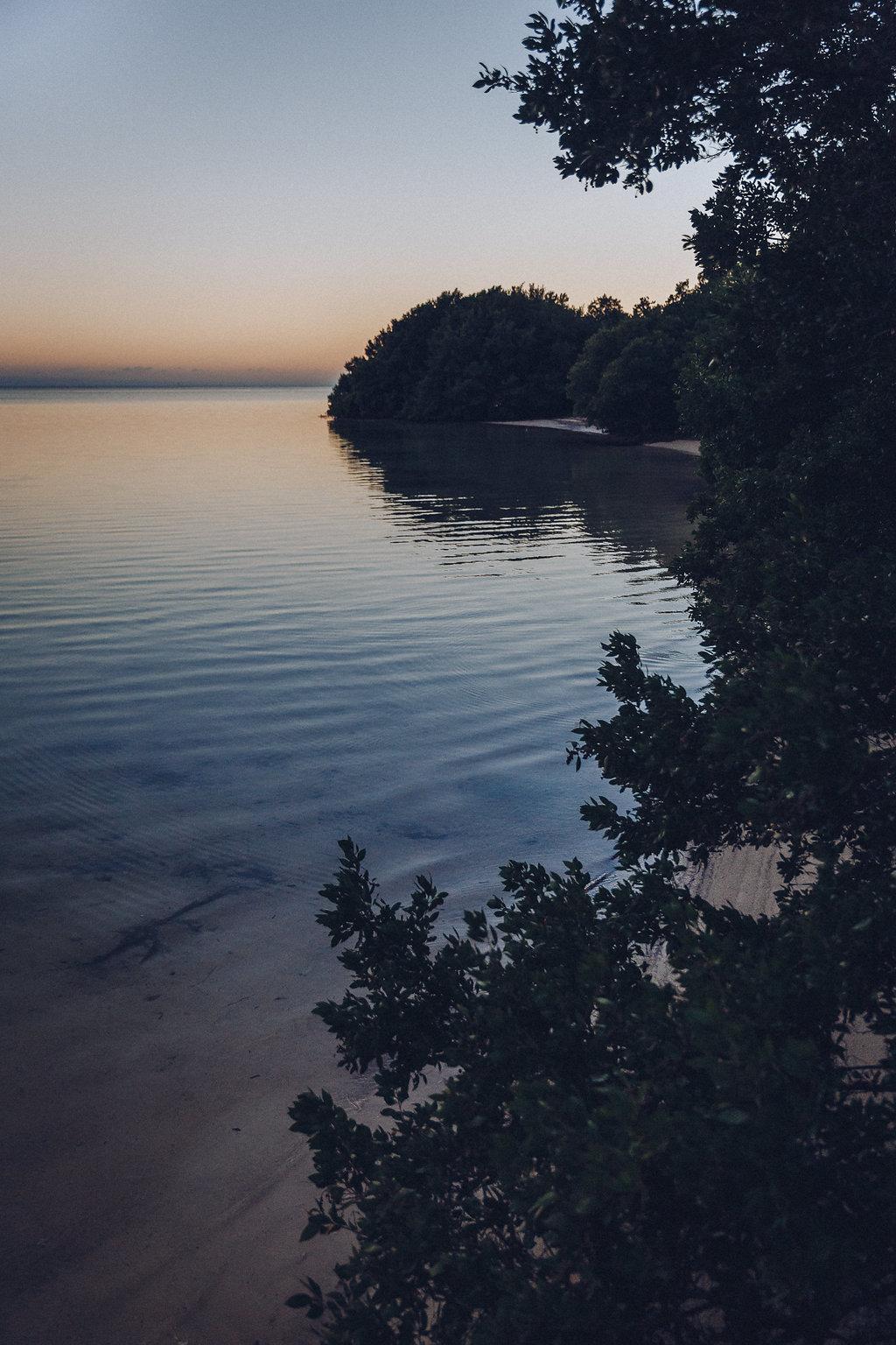 Natura delle isole Keys