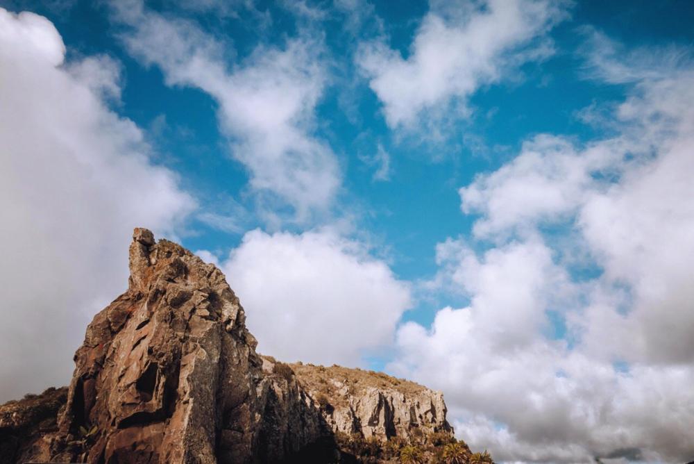 La natura selvaggia della Gomera
