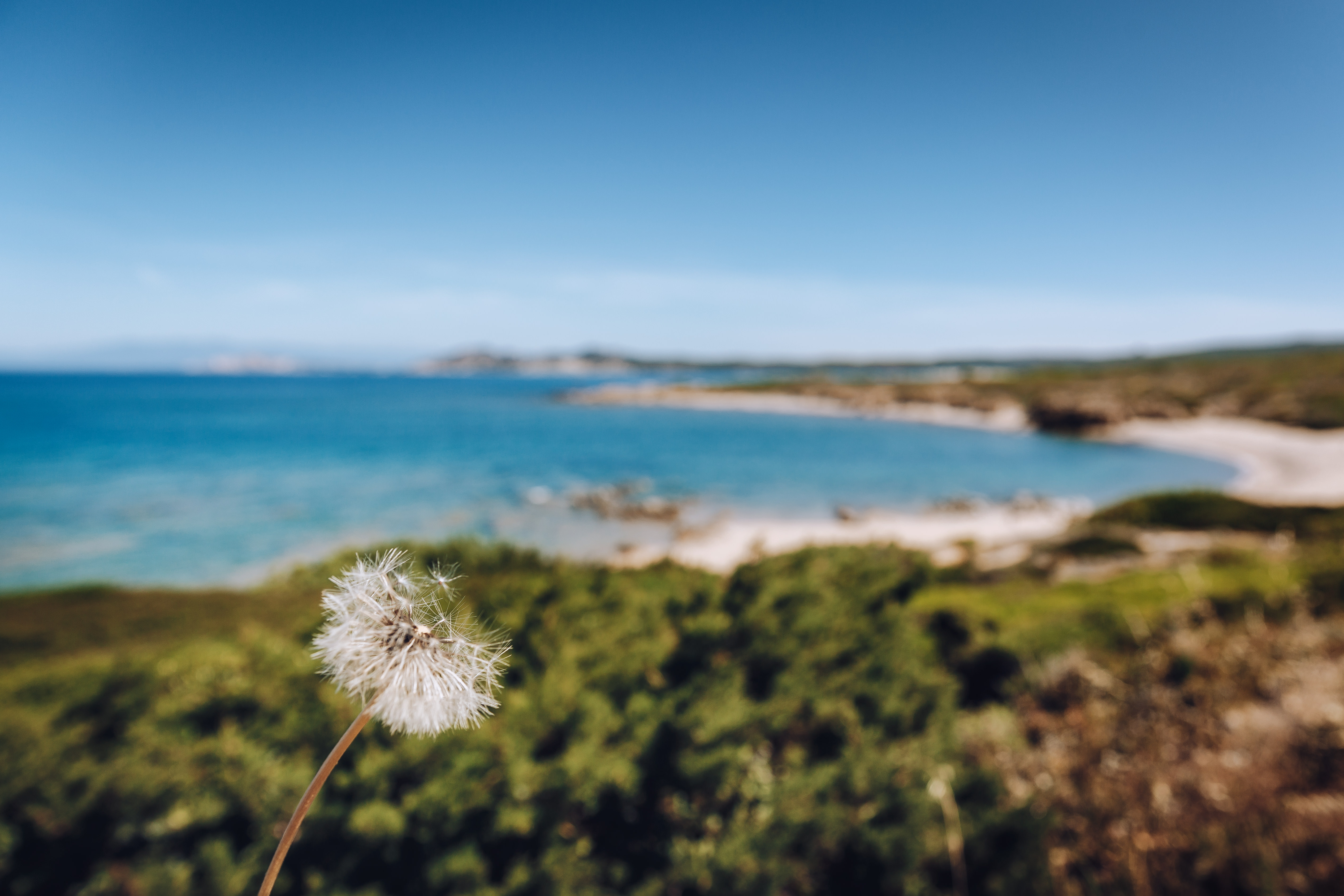 Santa Teresa Gallura spiaggia