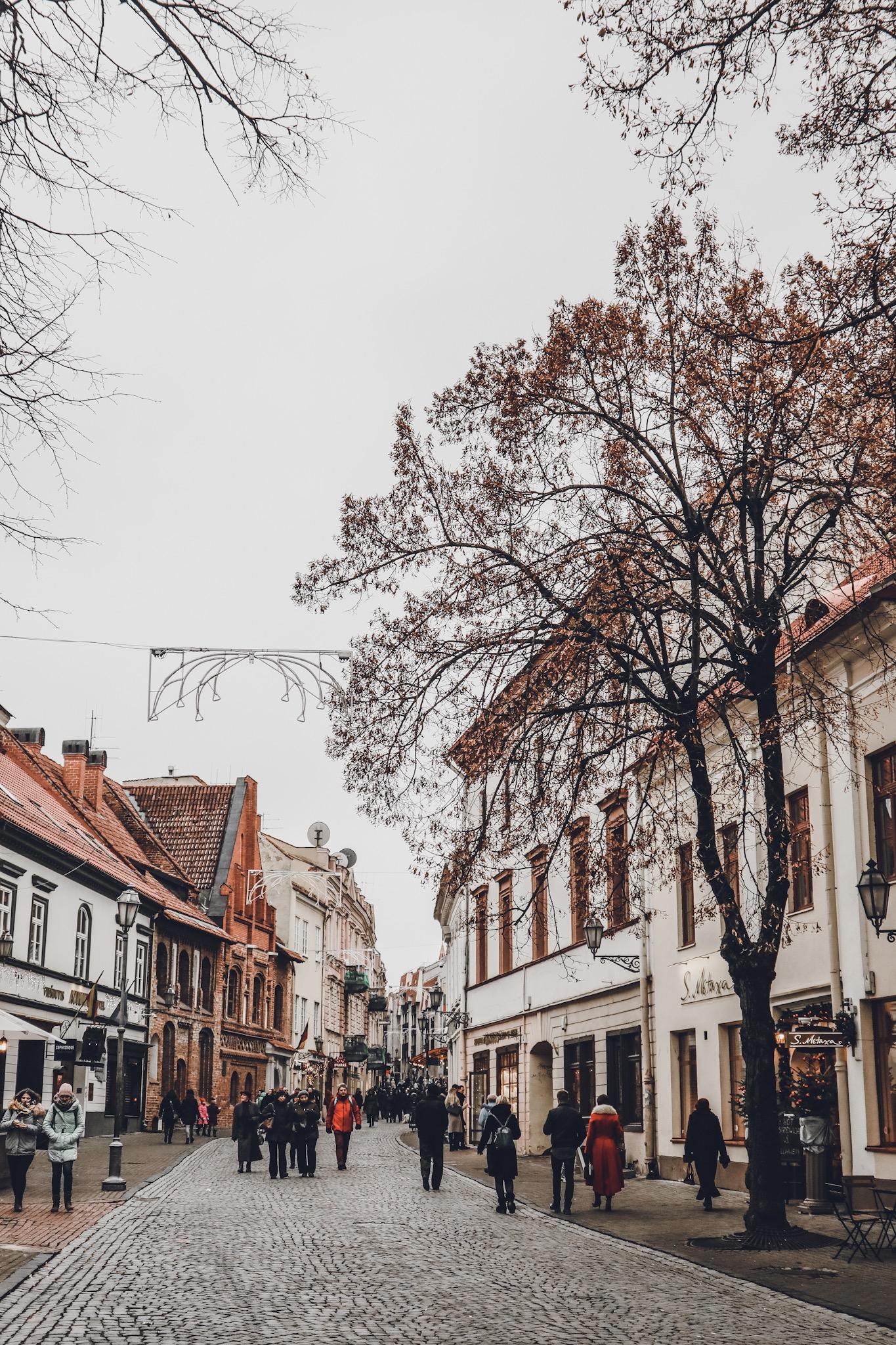Vilnius cosa vedere cosa fare -